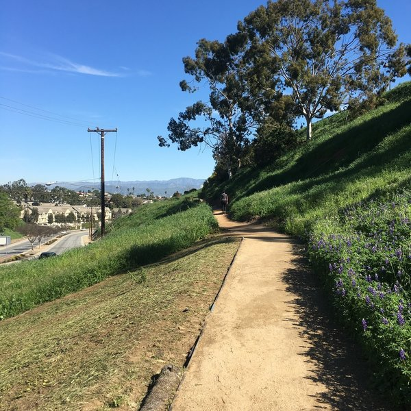 It's all downhill from the western start of Stocker Corridor Trail.