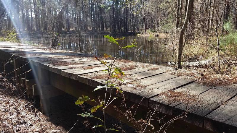 Many bridges on the 4C National Recreation Trail pass small ponds.