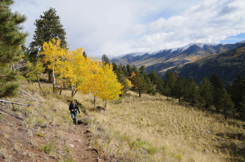 The frequent meadows and aspen groves make the Crystal Lake Trail a scenic hike with great views.