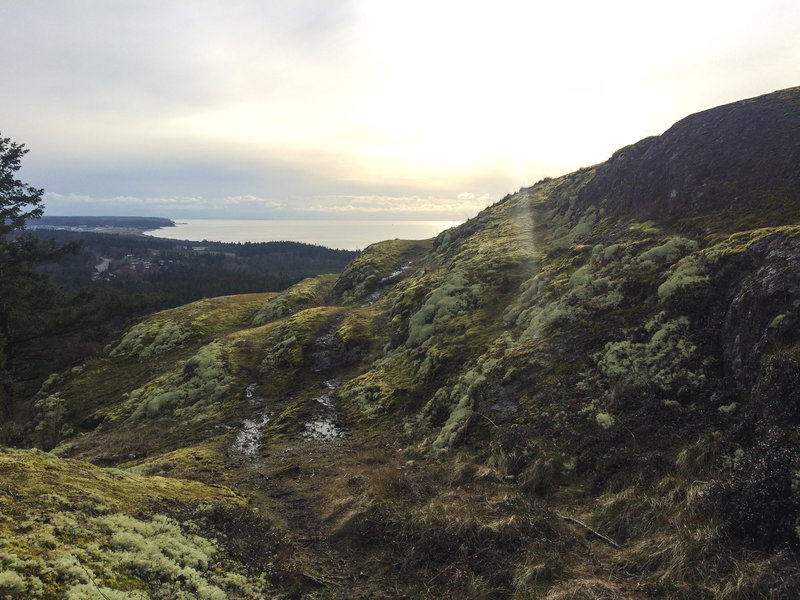 A mossy mountaintop sweetens your view.
