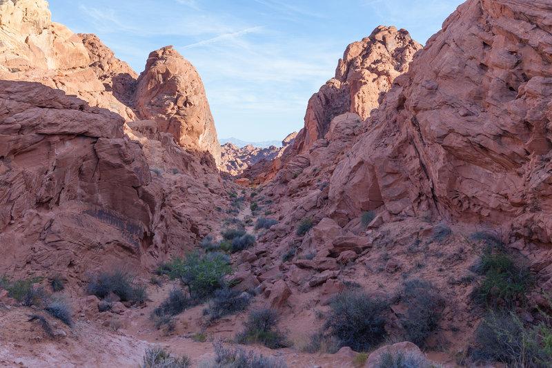 Rainbow Vista Trail traverses this gorgeous red rock corridor.