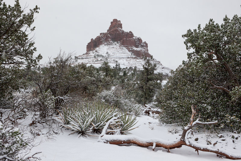 Bell Rock hides under the snow in Arizona.