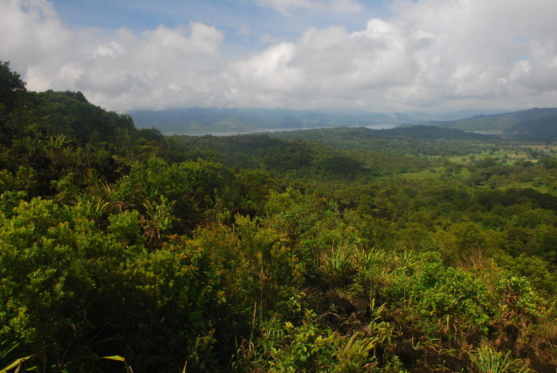 Enjoy a pleasant view over Lake Arenal from the base of the 1968 lava flow.