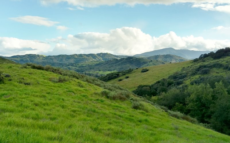 High on the Stile Ranch Trail, look back across the Santa Teresa Hills to the Santa Cruz Mountains in the distance.