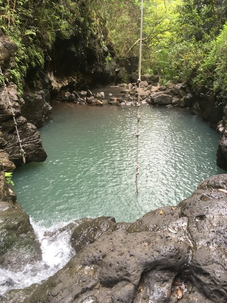 Take the rope swing at Lower Waimano Pool for a ride!