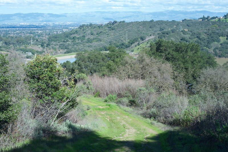 Enjoy great views back toward the South Bay from the Orchard Loop Trail.