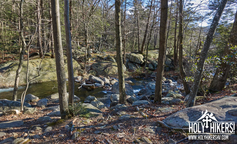Experience beautiful views of the brook as you follow along the trail.