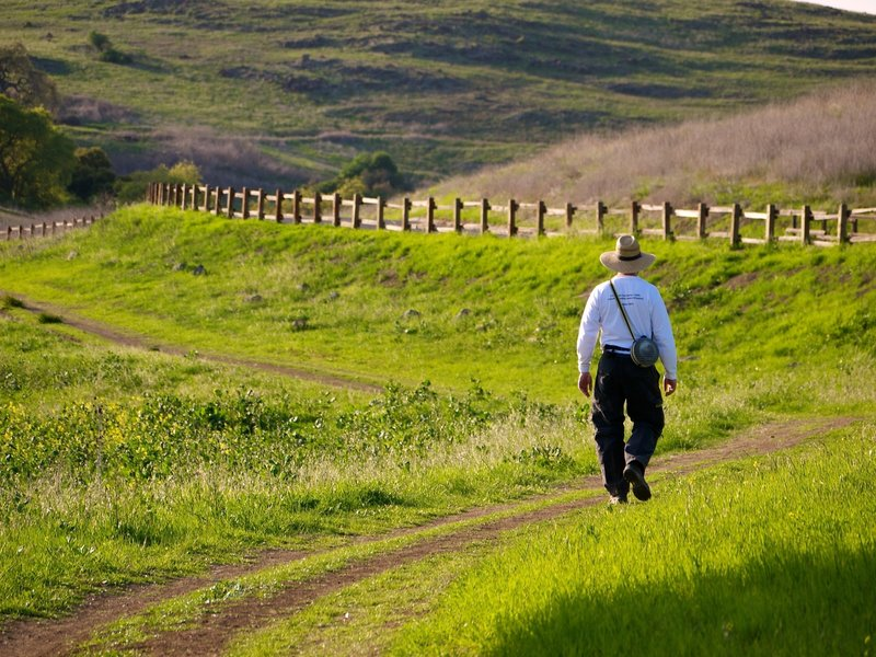 The Pueblo Trail offers a beautiful, verdant place to walk in the park.