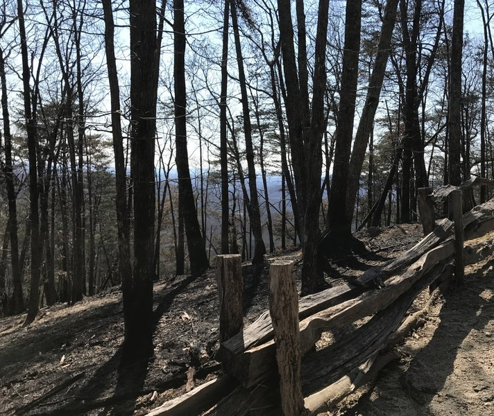 The reward for making it up the switchbacks is that the view from the summit starts to peek through the trees.