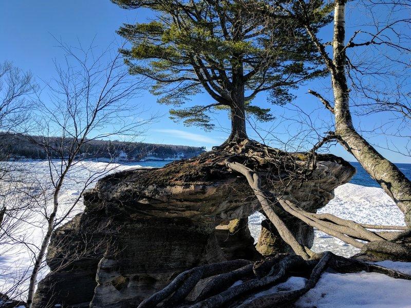 Chapel Loop Hiking Trail Munising Michigan