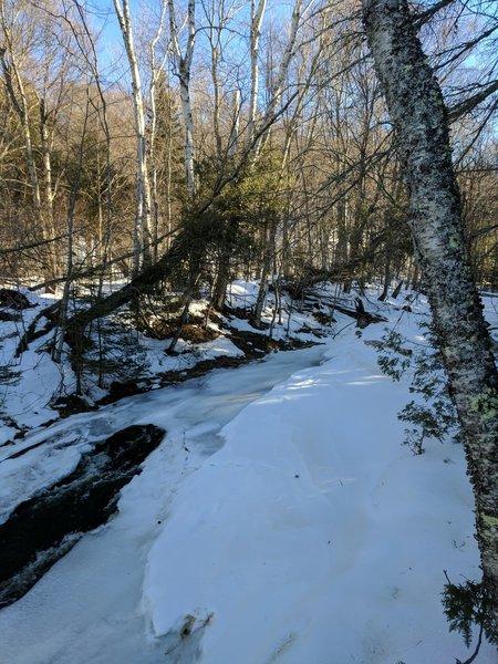 A partially frozen Chapel Creek creates a beautiful wintertime scene near the lakeshore.