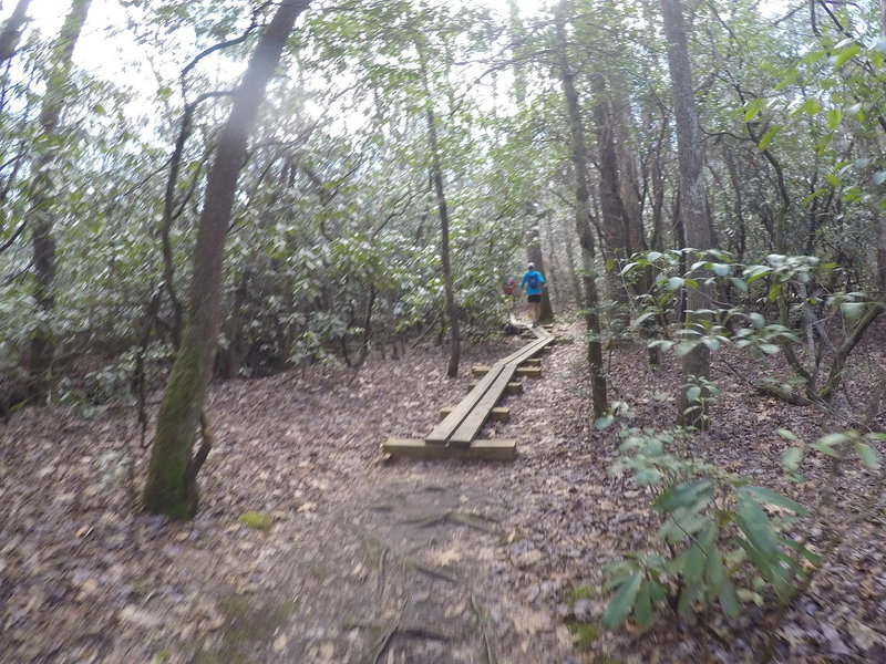 The Hike Inn Lodge Trail aids your passage through this muddy section with raised-plank boardwalks.