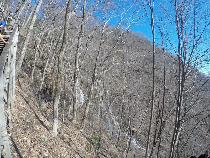 A steep set of steps ascend to Amicalola Falls.