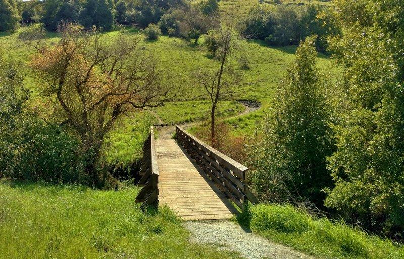 Cross Santa Teresa Creek to climb Rocky Ridge.