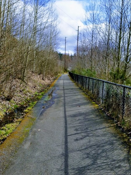This part of the trail is rife with rooty, broken pavement. It sure makes for a bumpy ride in a stroller!