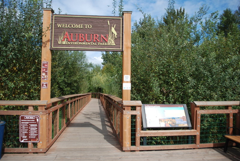 Look for the southern entrance to Auburn Environmental Park to read about park rules, info, and begin the trail.