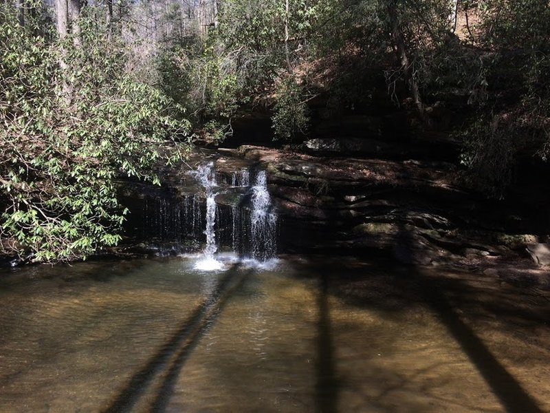Enjoy a small waterfall area near the beginning of the Table Rock Trail.