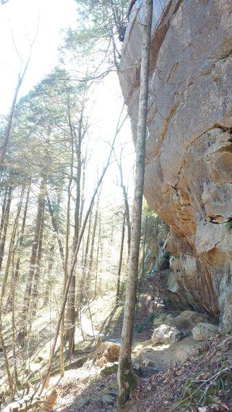 Yahoo Falls Loop Trail traverses beneath a cliffside.