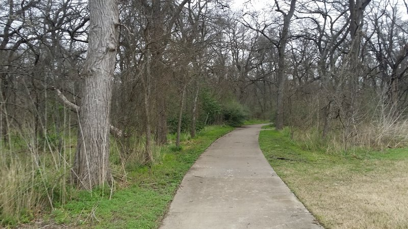 Here, the paved path enters the forest.