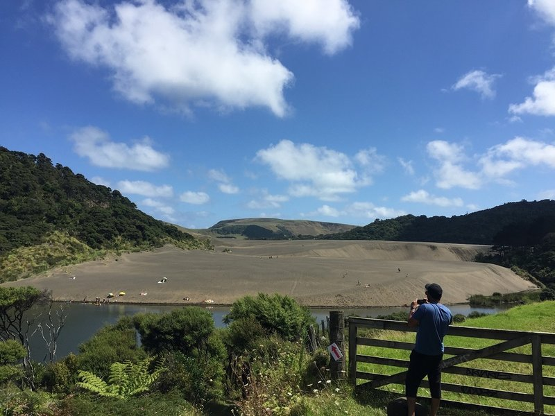From the trail, look out over the giant Black Sand Dune at Bethells Beach.