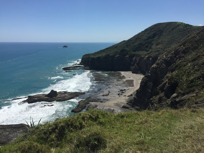 Enjoy phenomenal views of the coast along Te Henga.