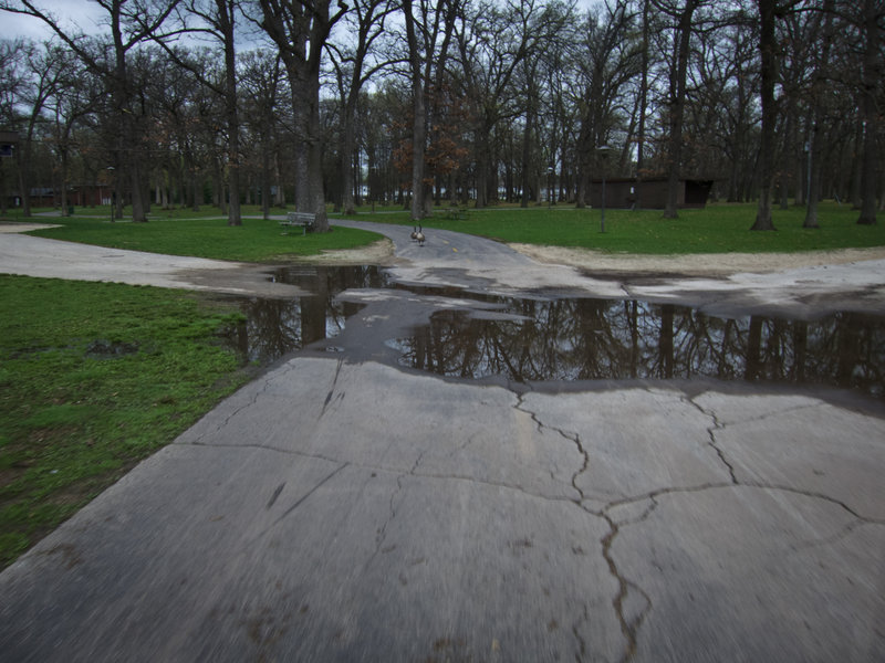 A paved and painted section of the Rock River Recreation Path heads through Shorewood Park.