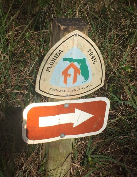 The 1,300-mile Florida Trail (FNST) crosses the Myrtle Point Trail.