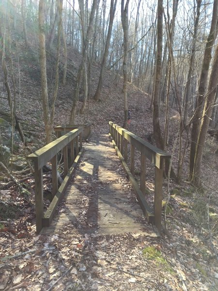 The Bee Cove Trail crosses the creek over this robust bridge.