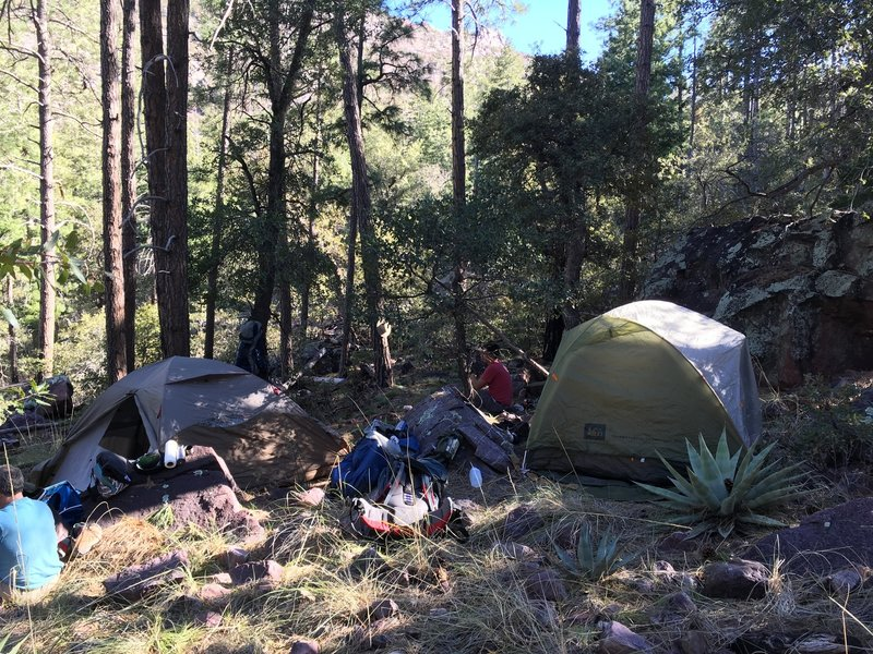 If you're backpacking on the Y Bar Trail, keep your eyes peeled for good, flat campsites. This was the best we could find, and the minor slope caused some night-time sliding in the tent.