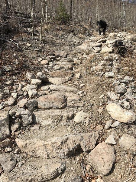 A rock step path aids your climb up Signal Butte.