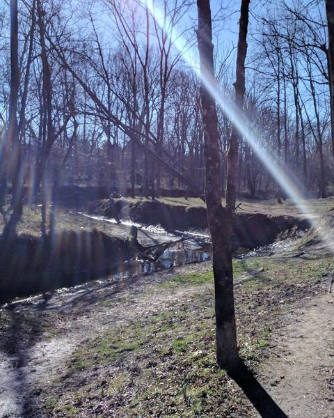 The lower trail follows along the creek.