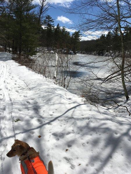 A frozen Salem Pond provides a pleasant sight from Upper Salem Pond Road.