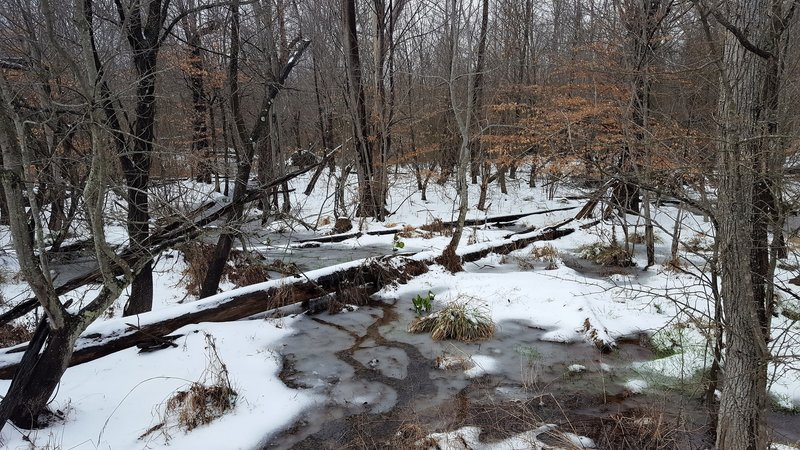 Winter weather leaves a blanket of snow on the trail in March.
