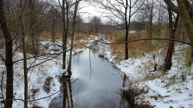 Enjoy pleasant views of the Paint Branch tributary near the bridge under University Boulevard.
