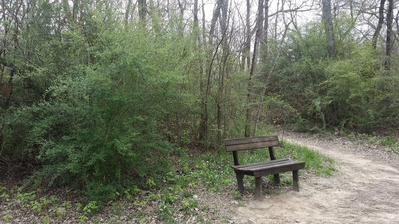 Tina's Bench provides a great resting point with a wonderful view of Clear Creek.