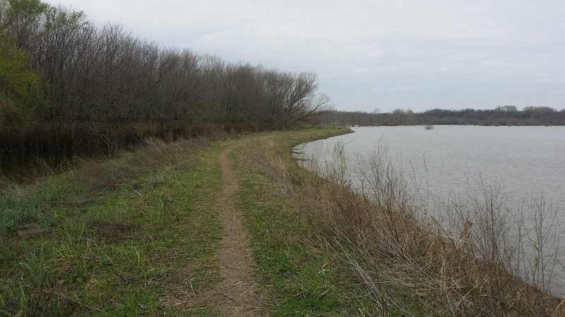 The trail travels along a levee in the lower wetlands area.
