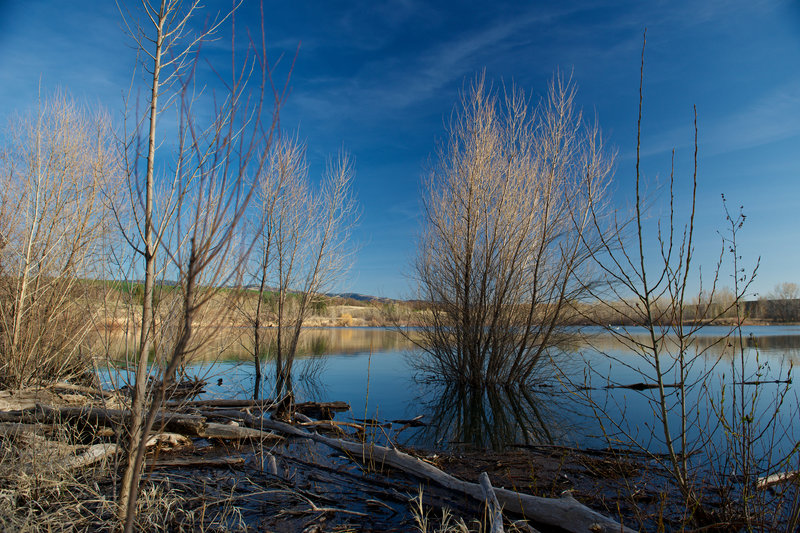 Explore the shoreline near the Meadowlark Trail.