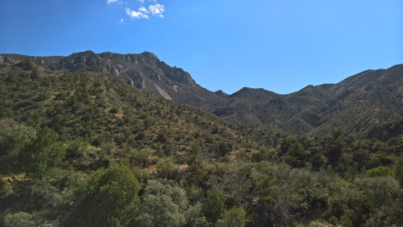 Emory Peak stands left-of-center from the Laguna Meadow Trail.