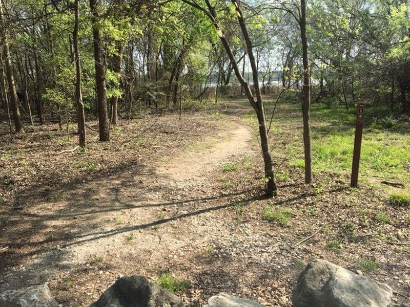 This is the start of the eastern portion of the Riverbottom Trail.