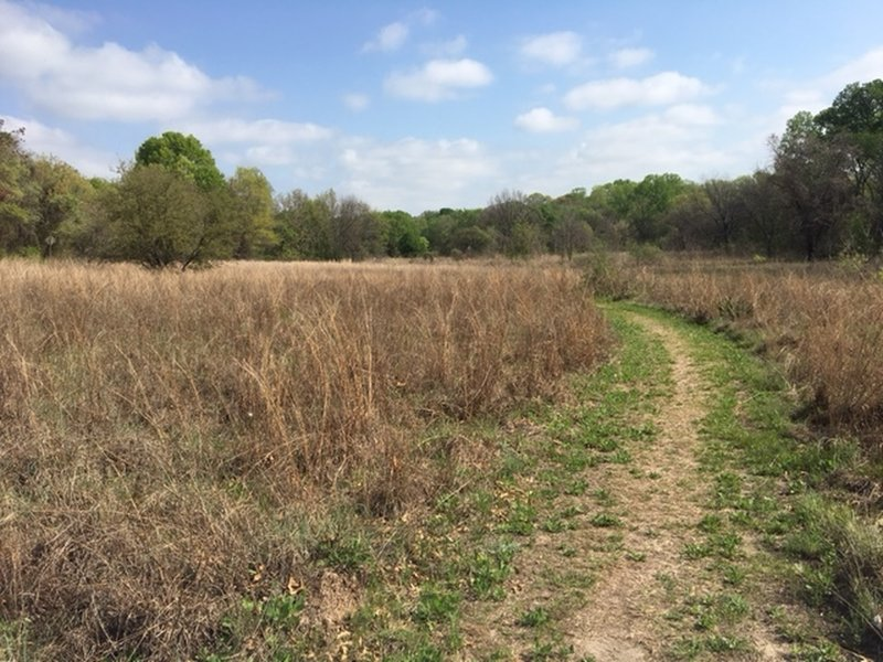 The trail travels through the prairie in this section.