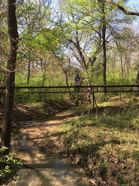 Bridge at intersection of wild plum trail.