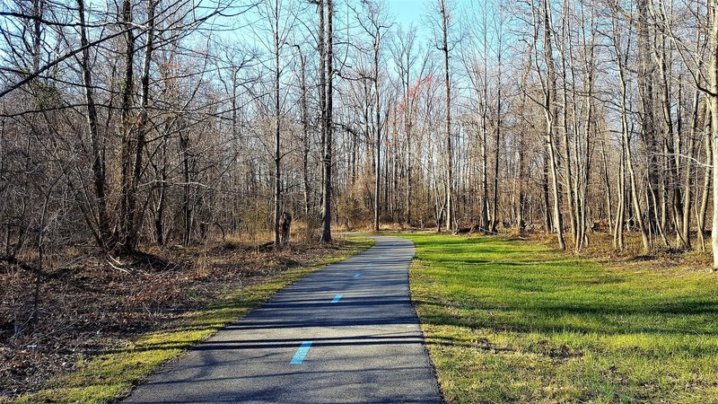 The Paint Branch Trail offers the solitude of a walk in the woods just minutes from Route 1 and Cherry Hill Rd.