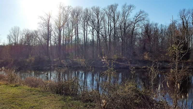 This is the pond at the northern terminus of the trail. What beauty exists so close to the Beltway!