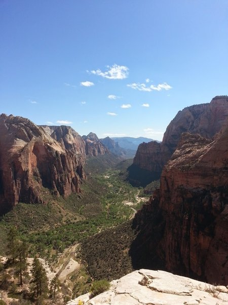 Angel's Landing is a must-see in Zion National Park.