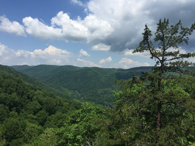 Take in this beautiful view from the Crabtree Falls Trail.