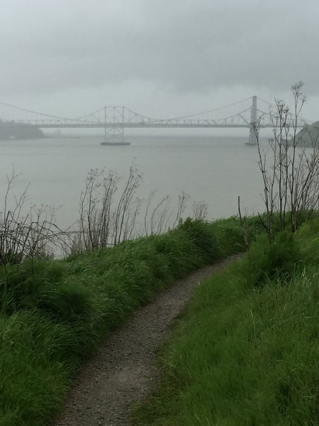 Enjoy this view looking out from the Benicia Bay Trail toward the Zampa Memorial Bridge.