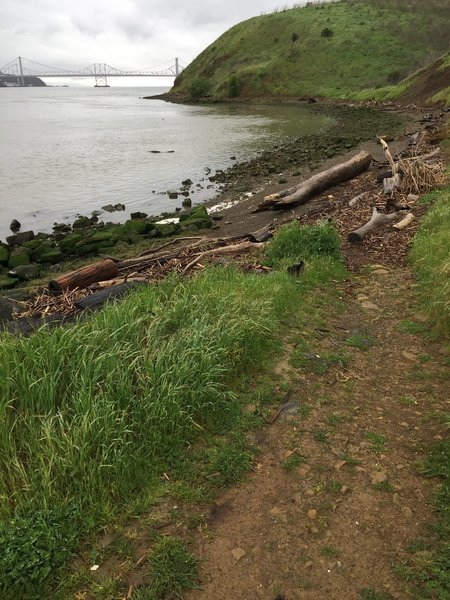 Dillon Point Trail offers great access to the beach and scenic views of the bay.