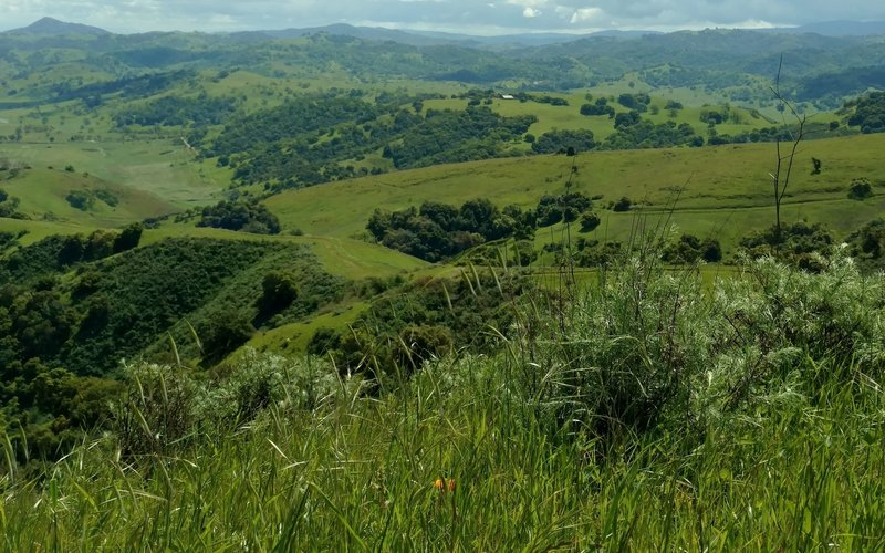 From high on the Boundary Trail, enjoy phenomenal views of the countryside south of San Jose.