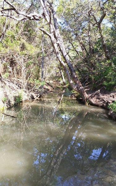 Tar Branch Creek heads right through the heart of Walnut Creek Metropolitan Park.