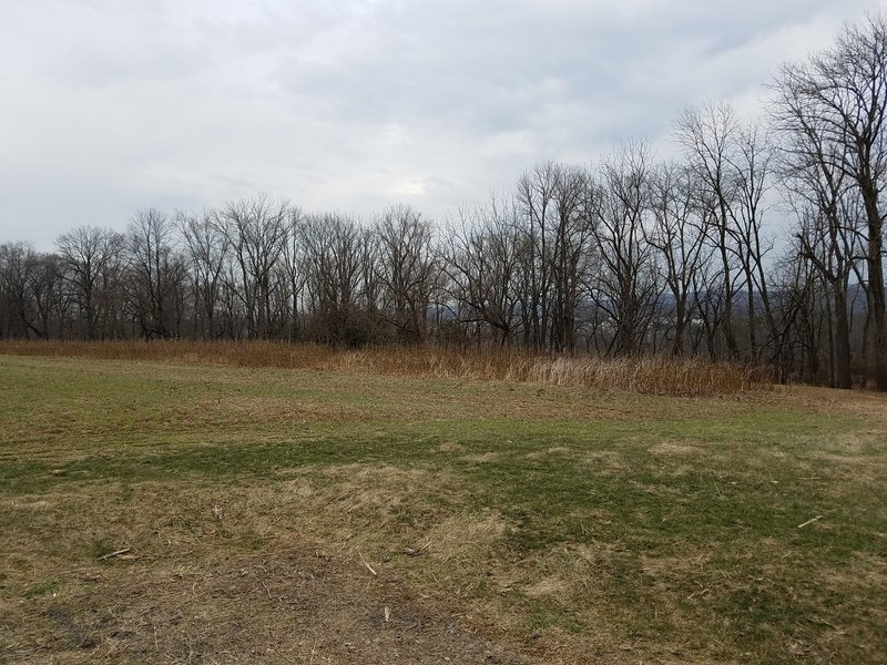 North Pointe Park offers scenic views.